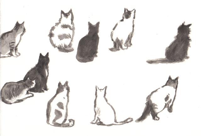 tsuin_cat